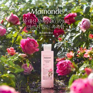 nước hoa hồng mamode rose water toner